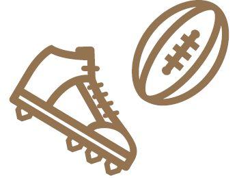 picto ballon de rugby